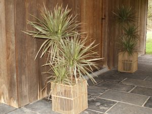 Planters Aran Square Set of 2